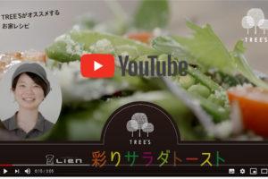 「TREE'S チャンネル」配信スタート!